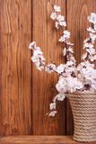 Pink apricot flowers in a vase Royalty Free Stock Images