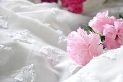 Pink Artificial Carnation on White Chiffon Royalty Free Stock Images