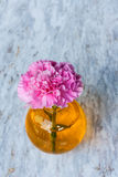 Pink artificial flower in brown round bottle Stock Photo
