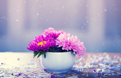 Pink aster flowers in a vase Royalty Free Stock Photos