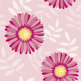 Pink aster seamless floral pattern Stock Photos