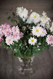 Pink asters in glass vase Royalty Free Stock Photo