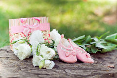 Pink baby booties and white flowers in the park. Pregnancy concept and a new life. Pink baby booties, flowers, a gift in the park. Pregnancy concept and a new royalty free stock images