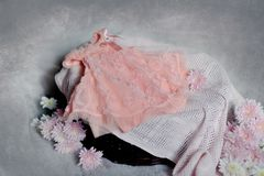 Pink baby dress Stock Image