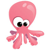 Baby Octopus. Pink baby octopus with big eyes Royalty Free Stock Photos