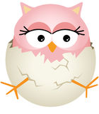 Pink Baby Owl in Egg Stock Photos