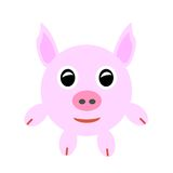 Pink baby pig. Stock Photo