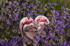Pink baby shoes in lavender field. Pink baby shoes in lavender summer field stock images