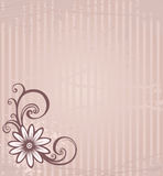 Pink background. Grunge monochrome card with flower and drop Stock Photos