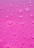 Pink background. Lots of water drops in pink background Royalty Free Stock Images