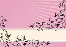 Pink background with black frame Royalty Free Stock Photography