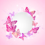 Pink background with butterfly Stock Photos