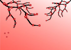 Pink background with flowering branches Stock Image