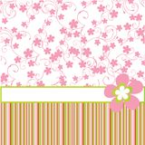 Pink background with flowers Royalty Free Stock Images