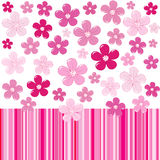 Pink background with flowers and stripes Stock Image