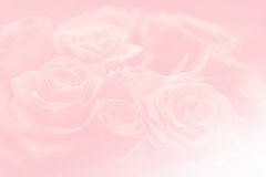 Pink background with  motive Stock Photos