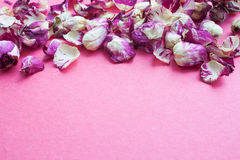 Pink background with rose petals Stock Photos