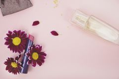 Red lipstick in chrysanthemum flowers, perfume. Pink background - space for text. Beauty, beauty and care royalty free stock photography