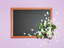 Pink background with spring flowers on the chalkboard Stock Photo