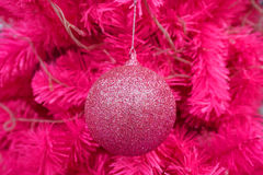 Pink ball decorated on Christmas tree Royalty Free Stock Images
