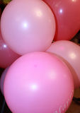 Pink balloons Royalty Free Stock Images