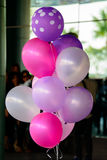 Pink Balloons Stock Image