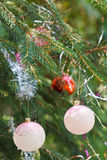 Pink balls and red ball house christmas decoration Royalty Free Stock Images