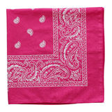 Pink  bandanna Stock Photography