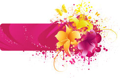 Pink banner with lilies Stock Photos
