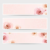 Pink banners with roses. Vector eps-10. Royalty Free Stock Images