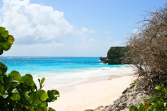 Pink beach. Crane beach at the Barbados island stock photos
