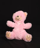 Pink bear Royalty Free Stock Photos