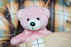 Pink bear. In the hands Stock Photos