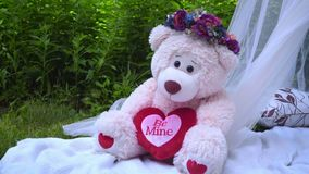 Pink bear with flowers decoration. White bear toy. Teddy bear stock footage