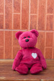 Pink Bear toy alone on wooden backgrounds Royalty Free Stock Photo