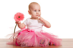Pink beauty Royalty Free Stock Photos
