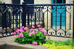 Pink Begonias, Iron Fence, Teal Door Stock Images
