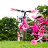 Pink bicycle Royalty Free Stock Image
