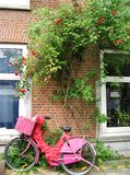 Pink bicycle in Amsterdam. Pink bicycle with flowers leant on a wall in Amsterdam Royalty Free Stock Photography