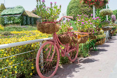 Pink bicycle decorated with colourful flowers in the pots Stock Photo