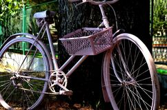 Pink bicycle Royalty Free Stock Images