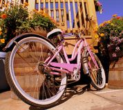 Pink bike. And flowers under a clear blue sky stock photo