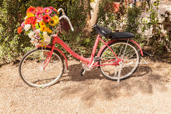 Pink bike. Adorned with beautiful flowers royalty free stock photos