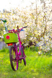 Pink bike in the park. Pink bike with white and green baskets standing in the park royalty free stock images