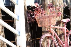 Pink bike. Pink bike with pink flowers stock image