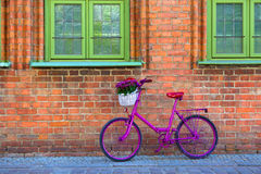 Pink bike standing by the wall. Pink bike with white basket full of flowers standing by the brick wall next to green windows Stock Photos