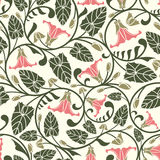 Pink bindweed Royalty Free Stock Image