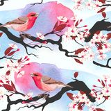 Pink bird on cherry branch seamless Royalty Free Stock Images