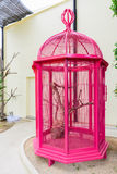 Pink birdcage Royalty Free Stock Images