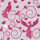 Pink birds Royalty Free Stock Image